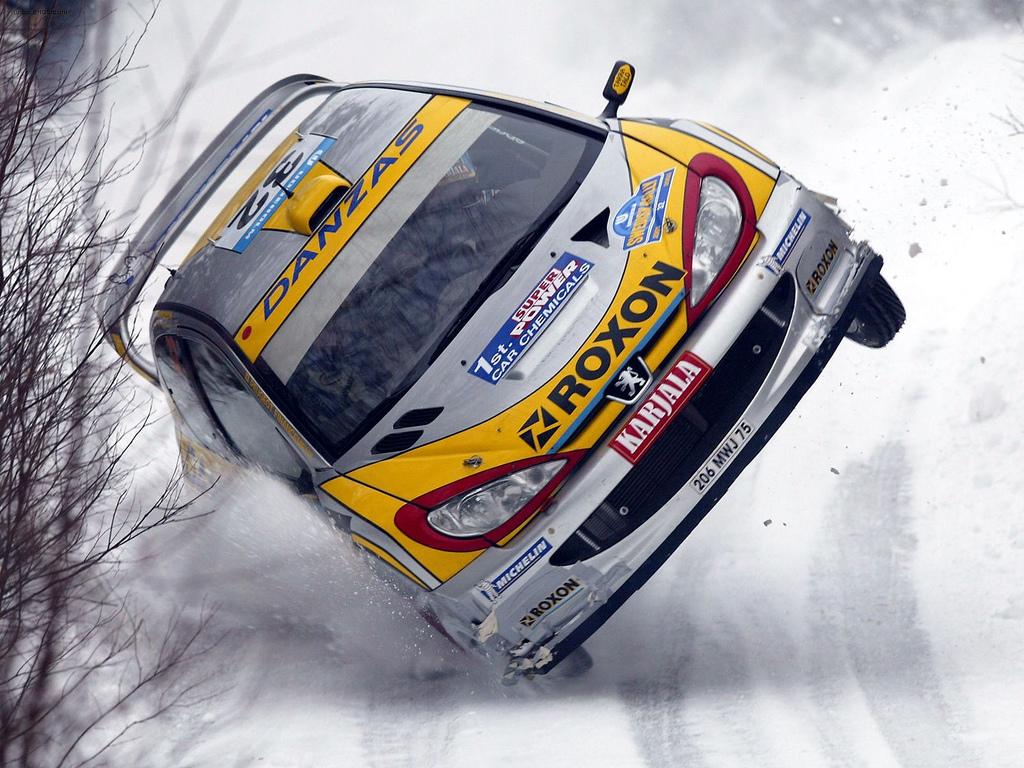 Peugeot_206_WRC