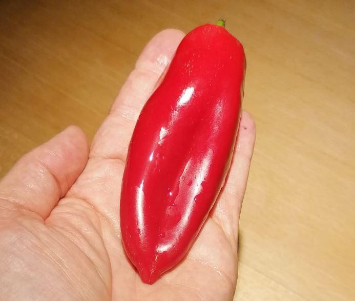 Peperyoni